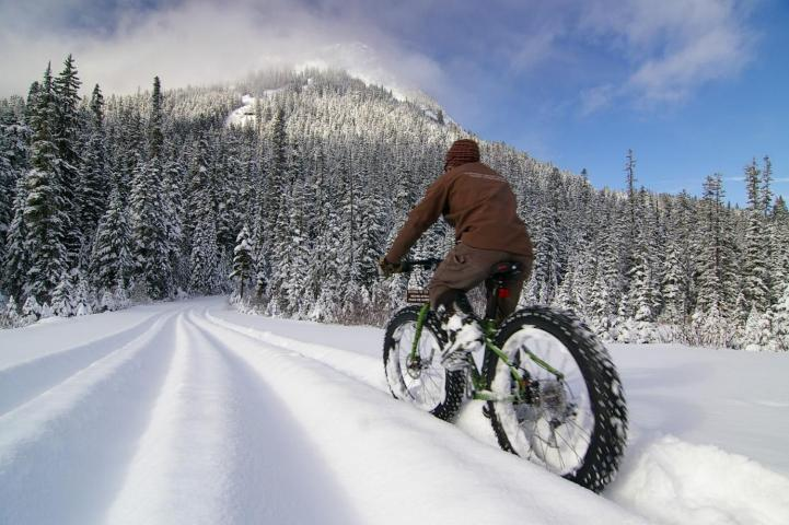 Fat Bike Tours & Rentals