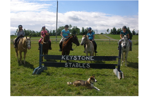 Keystone Stables in Summer